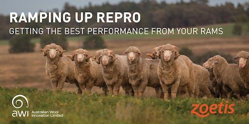 Ramping up Repro