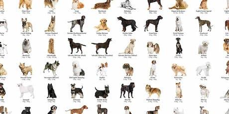 Amazing Pet Expos bismark meet the breed tickets