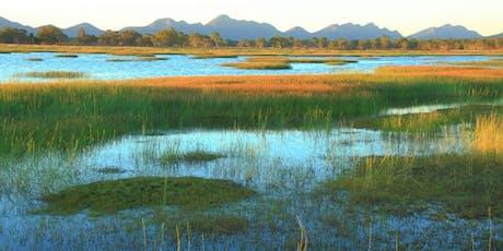 Nature Glenelg Trust wetland restoration tour tickets