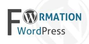 """Formation 2 jours """"Réalisez votre site internet avec Wordpress"""" - Castelnau-le-lez (34)"""