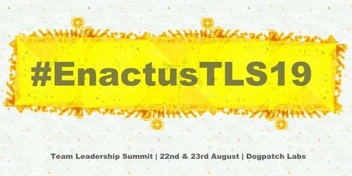 Enactus Ireland: Team Leadership Summit
