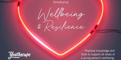 Youthscape - Resilience and Emotional well being training for those working with young people