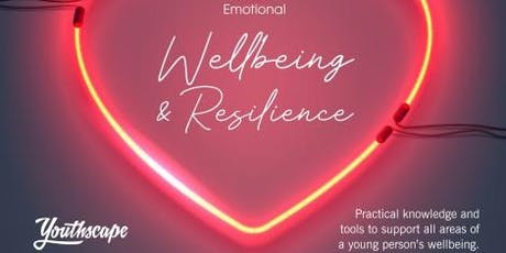 Youthscape - Resilience and Emotional well being training for those working with young people tickets