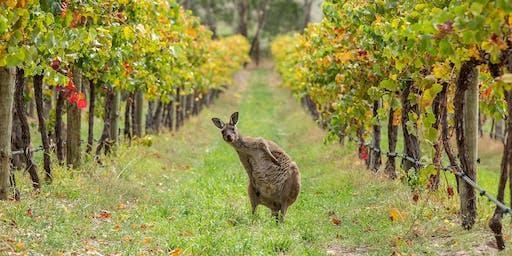 Taste of West Cork 2019 - Australian Wine Tasting led by Harriet Tindal MW