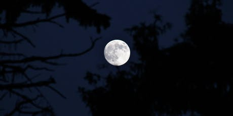 Full Moon/Partial Lunar Eclipse meditation tickets