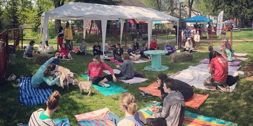 Feels Like OM Goat Yoga at BAYarts Farm and Art Market (5PM)