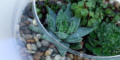 Succulent Garden Workshop at Axe and Arrow Brewing