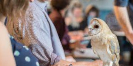 Wild Life Drawing: Real Owls tickets