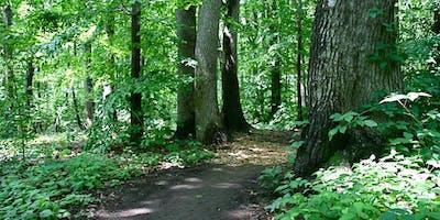 Greenbelt Seasonal Exploration Walk