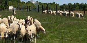 Maryland Small Ruminant Pasture, Grazing, & Browsing...