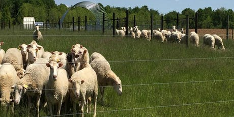 Maryland Small Ruminant Pasture, Grazing, & Browsing Conference tickets
