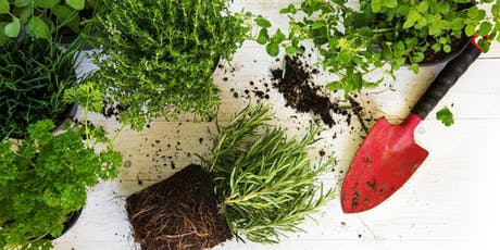 Herb Garden: Planter Customization with Miracle-Gro - Kenwood Towne Centre tickets