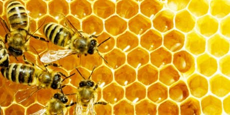 The Sweet Story of Honey, with Dr. Gene Robinson tickets