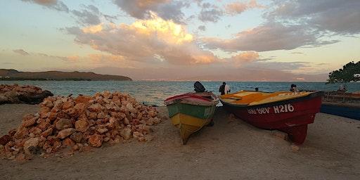 Jamaica: Montego Bay, Negril, Treasure Island, Kingston and More...