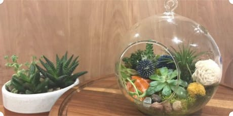 Hanging Globe Terrarium Workshop at Ritual Coffee tickets