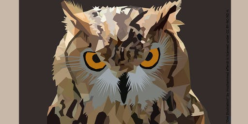 Owls on the Prowl: Presented by New Canaan Nature Center