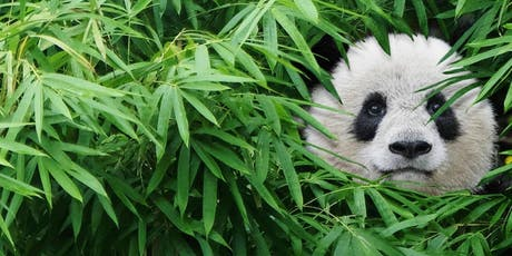 PANDAS IMAX® Film tickets
