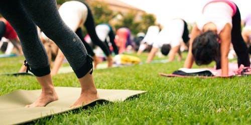 Yoga at Seascape