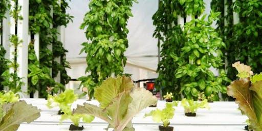 Hydroponics and Vertical Farming