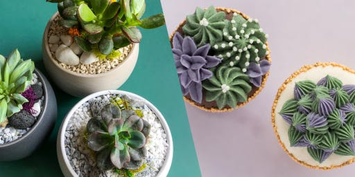 DIY Plant Potting & Succulent Cupcake Decorating Workshop