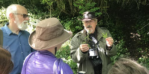 Guided Flora and Fauna Talk