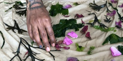 Low Tide: Summer Scents and Aromatic Dyes