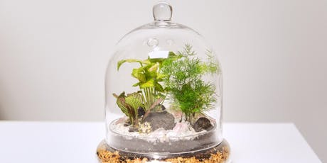 "Swig and Dig ""Tropical Cloche Terrarium"" Edition  tickets"