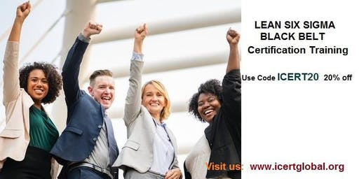 Lean Six Sigma Black Belt (LSSBB) 4-Days Certification Course in Aptos, CA
