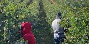 Feria Capacitacion para Contratistas y Supervisores de Trabajos Agricolas