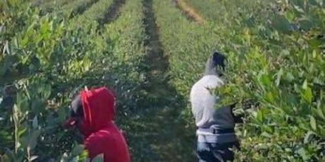 Agricultural Labor Laws Forum for Employers tickets