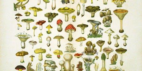 Mushroom Growing Workshop//Atelier de culture de champignons billets
