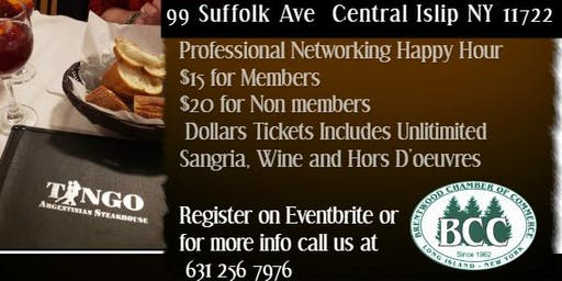 Professional Networking Happy Hour