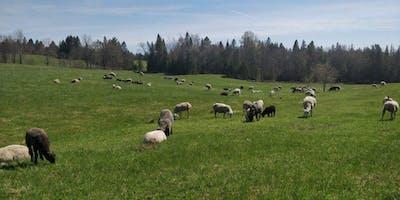 Cloverworks Farm Tours