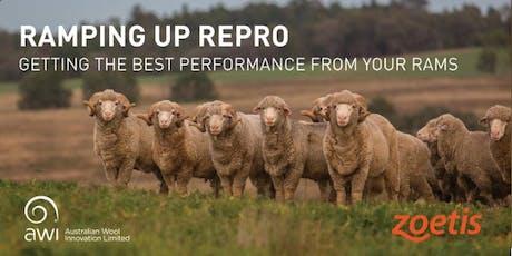 RAMping Up Repro - Molka tickets