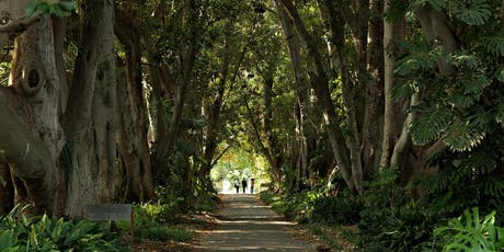 Mid-Year Orientation Botanic Gardens Cultural Walk tickets