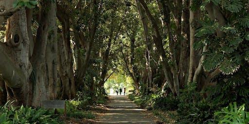 Mid-Year Orientation Botanic Gardens Cultural Walk