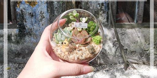 Kuala Lumpur Succulent Terrarium Workshop