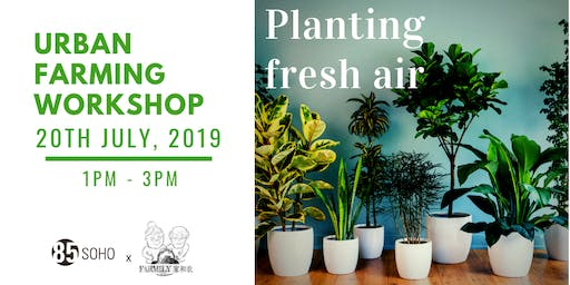 Propagating of Indoor Air-purifying Plants