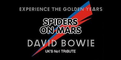 Spiders on Mars - David Bowie a tribute