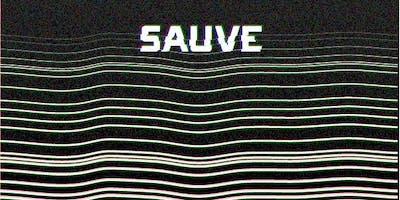 SAUVE (South Asian Union Voltage Experiment)