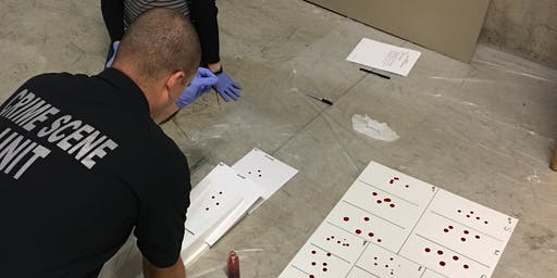 40 - Hour Basic Bloodstain Pattern Analysis