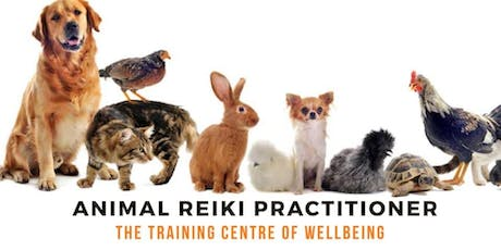 Animal Reiki Practitioner Training tickets