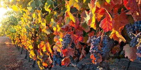 Wines for Fall tickets