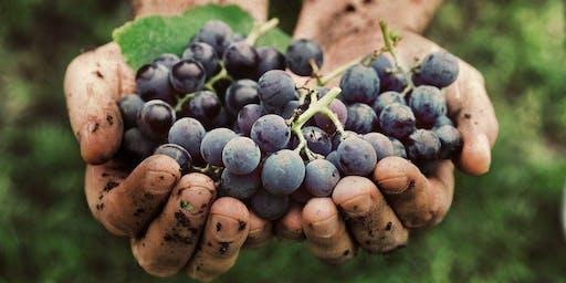 Harvest Report!