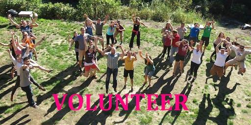 Seattle ICO New Volunteer Training