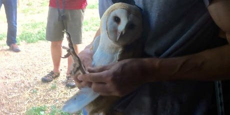 Barn Owl Banding + Presentation tickets