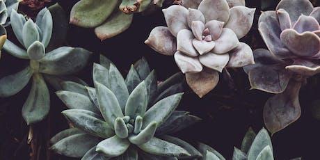 Succulent Terrarium Workshop at Summer Wednesdays! tickets