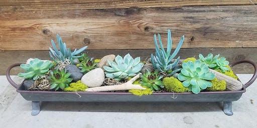 Succulent Trough Workshop