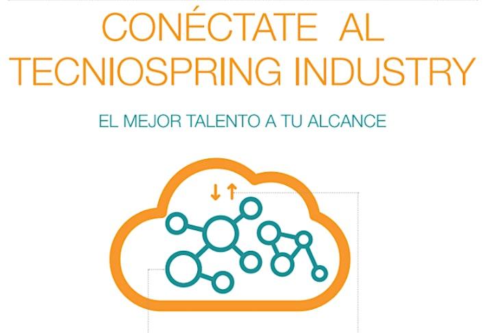 Imagen de Presentación del programa TECNIOspring Industry