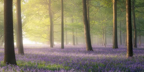 Landscape Photography Workshop with Jack Lodge and Sony UK tickets